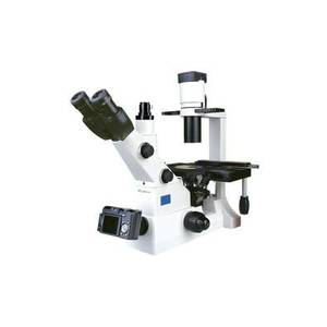 Labtron Inverted microscopes
